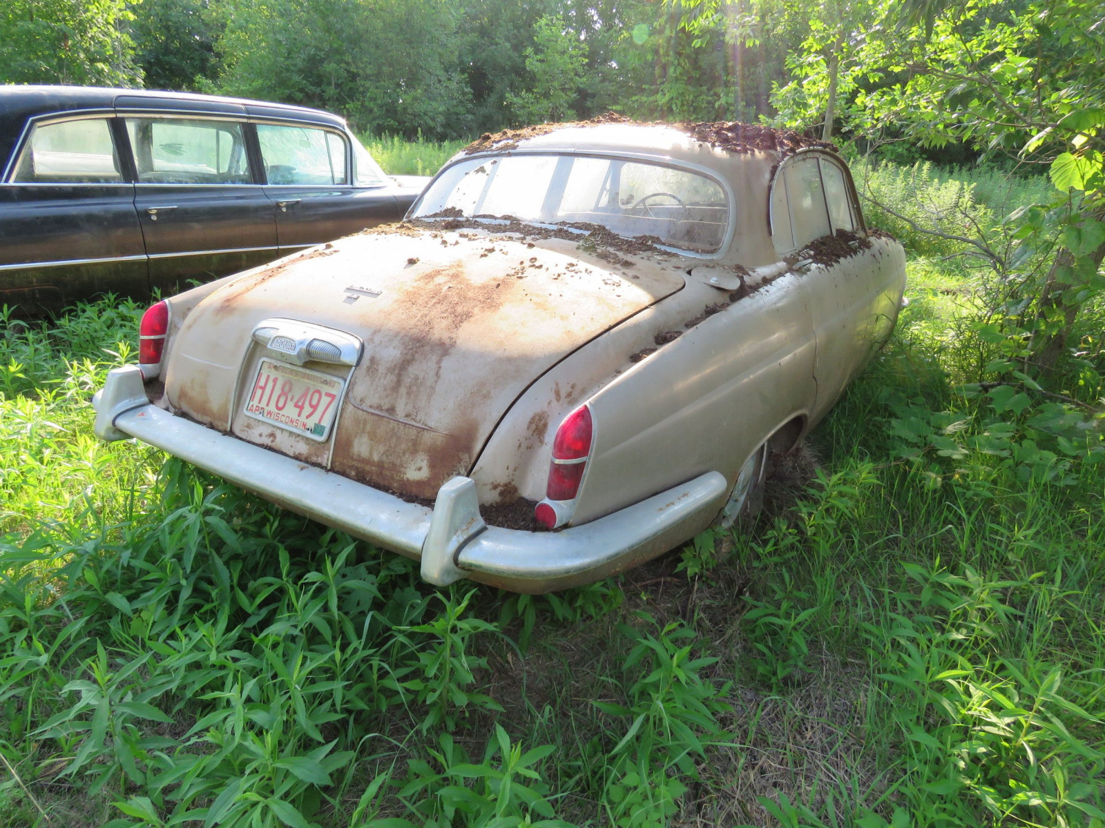 1966 Jaguar 4.2 4dr Sedan - Image 3