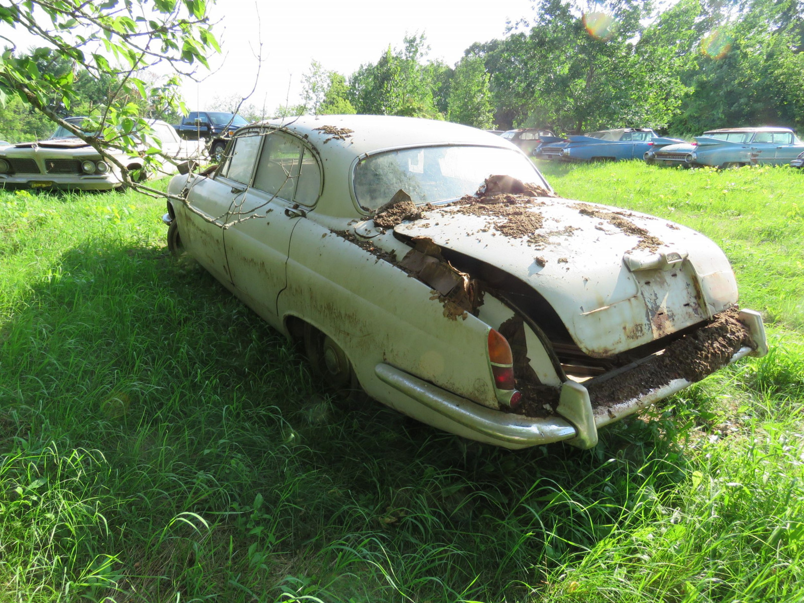 1965 Jaguar Mark X 4dr Sedan Project - Image 4