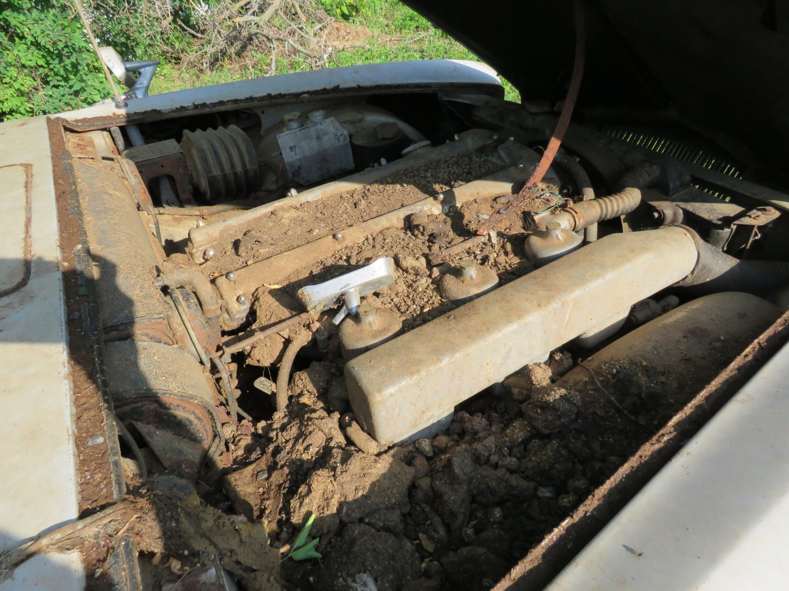 1965 Jaguar Mark X 4dr Sedan Project - Image 6