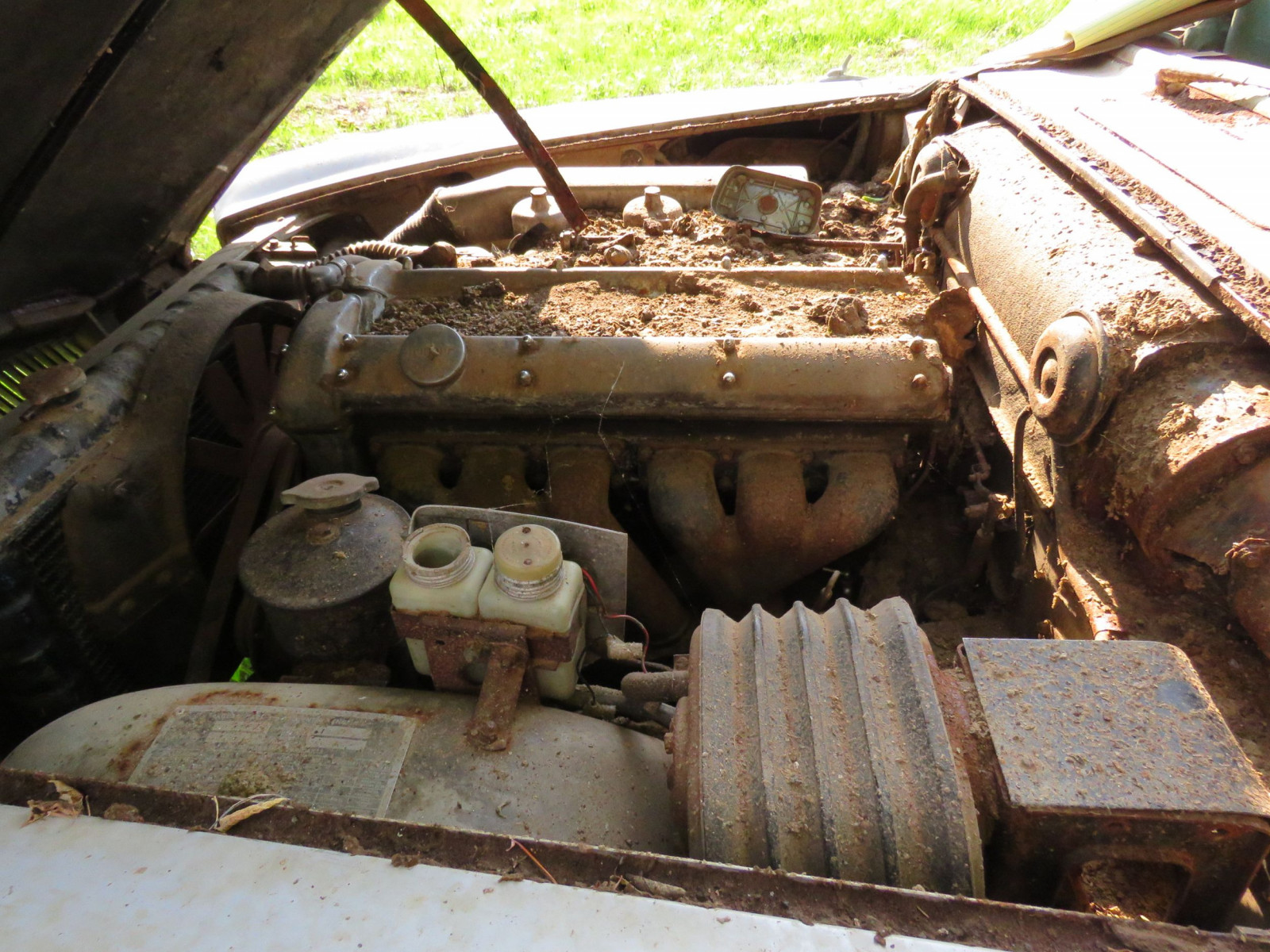 1965 Jaguar Mark X 4dr Sedan Project - Image 7