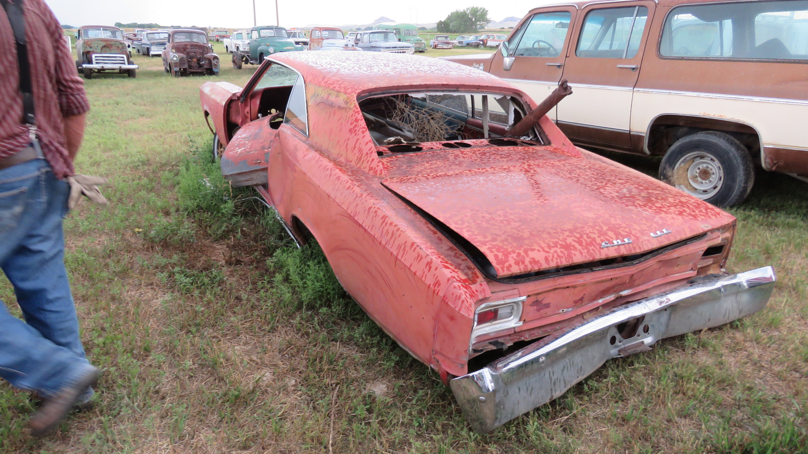 1966 CHEVROLET CHEVELLE FOR PARTS - Image 3