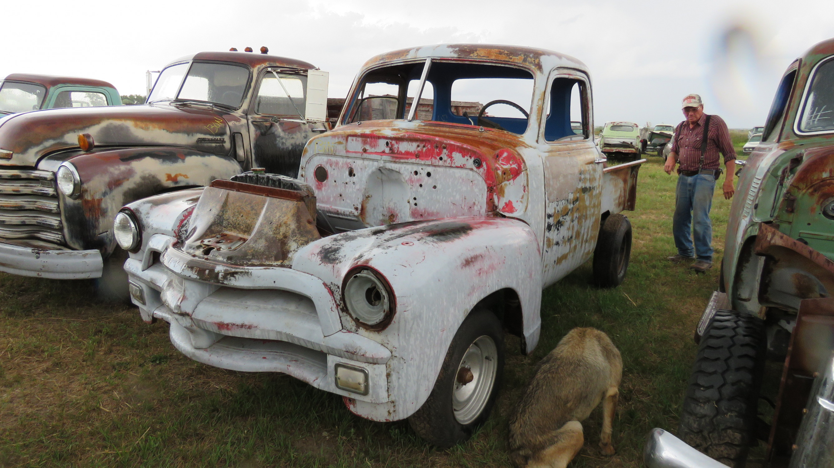 1954 CHEVROLET 5 WINDOW PICKUP PROJECT - Image 2
