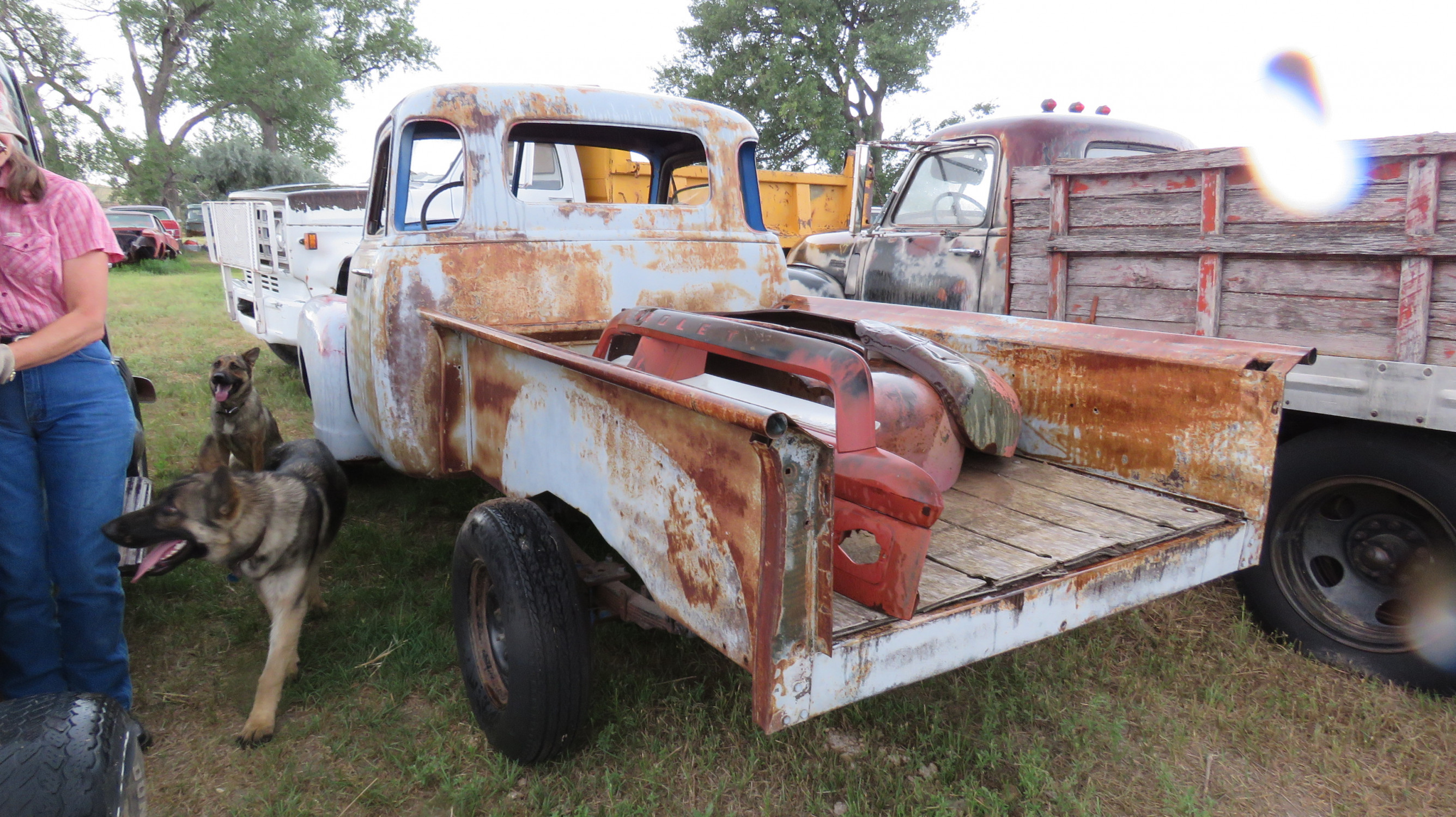 1954 CHEVROLET 5 WINDOW PICKUP PROJECT - Image 3