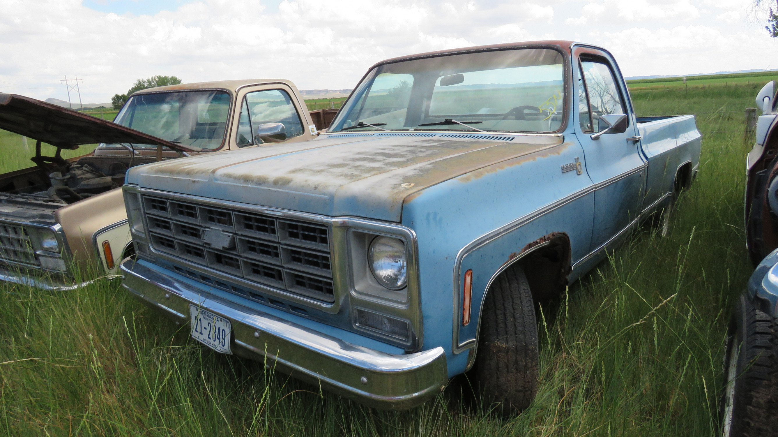 1979 Chevrolet Scottsdale Pickup - Image 1
