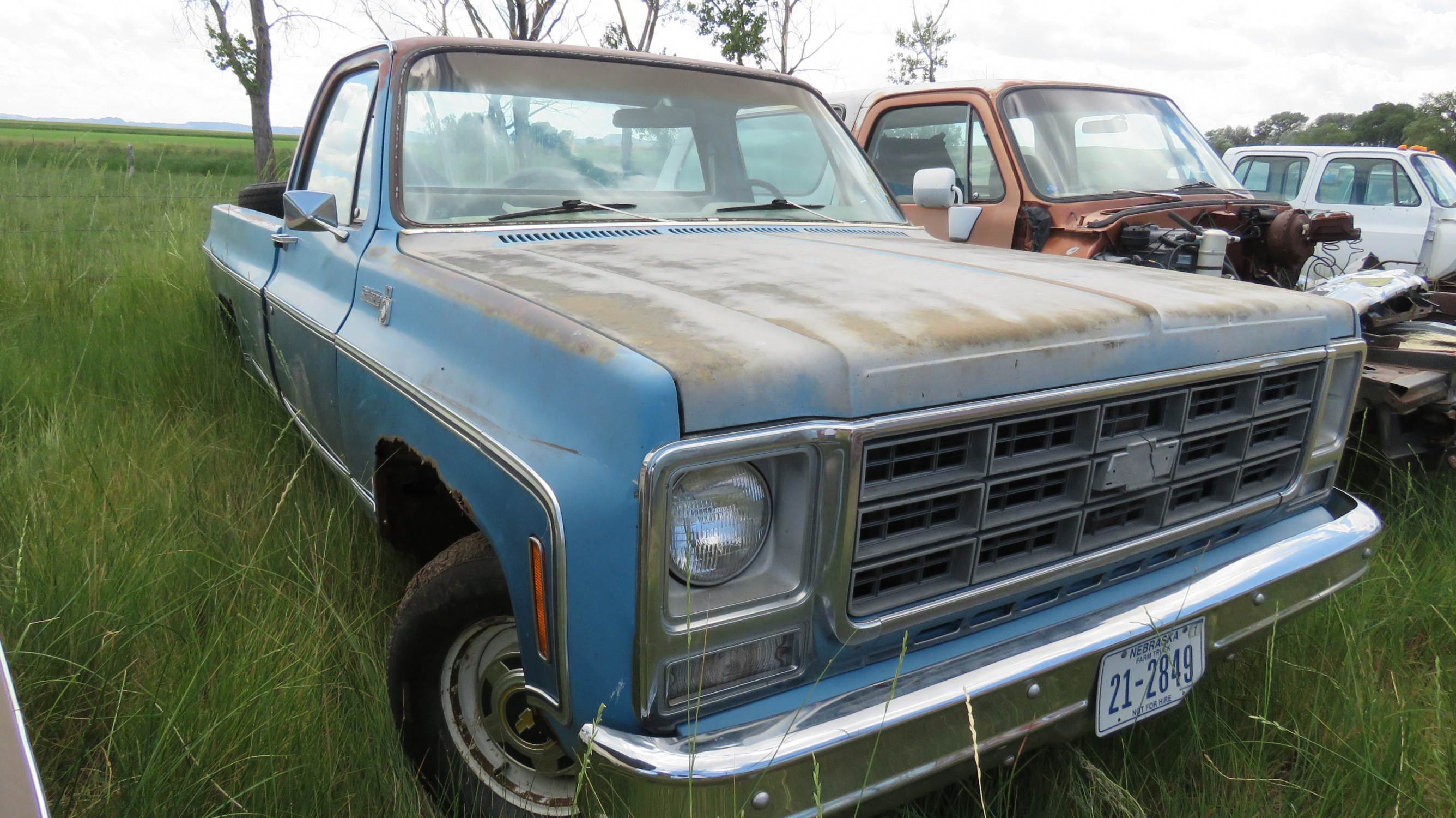 1979 Chevrolet Scottsdale Pickup - Image 2