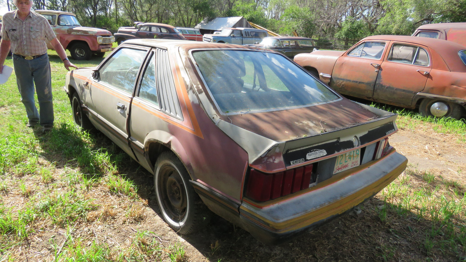 1979 Ford Mustang Coupe for Project or Parts - Image 4
