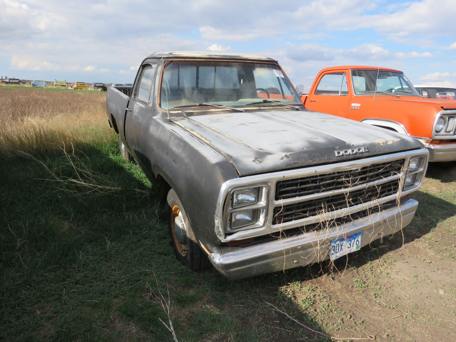 Dodge D150 Pickup - Image 2