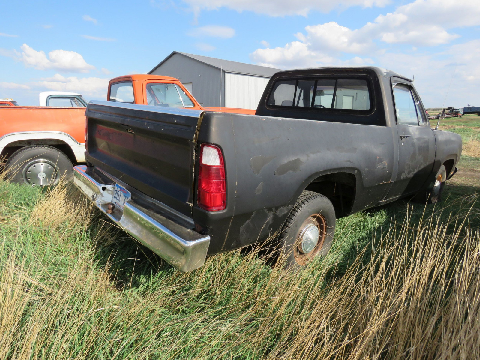 Dodge D150 Pickup - Image 3