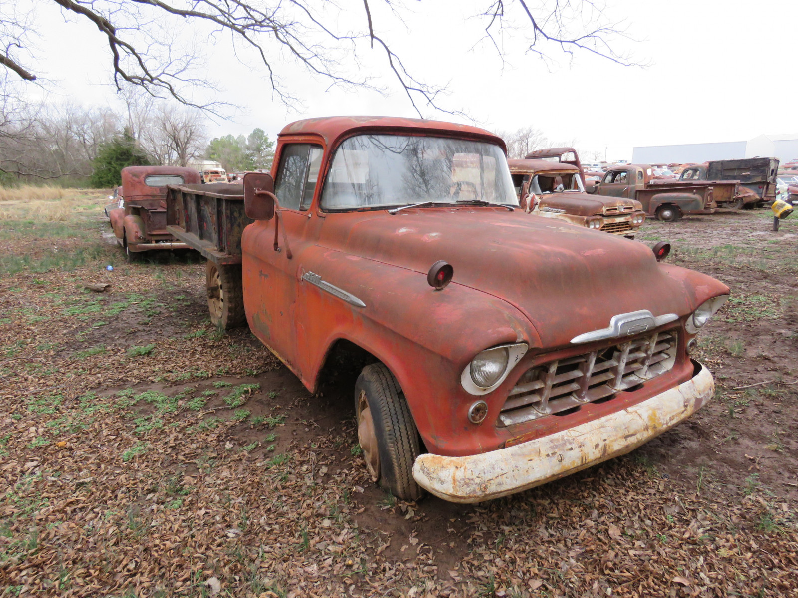 1955 Chevrolet 3600 Series Truck - Image 2