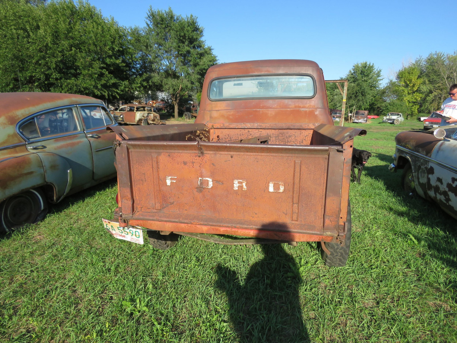 1953 Ford F100 Pickup for Rod or restore - Image 4