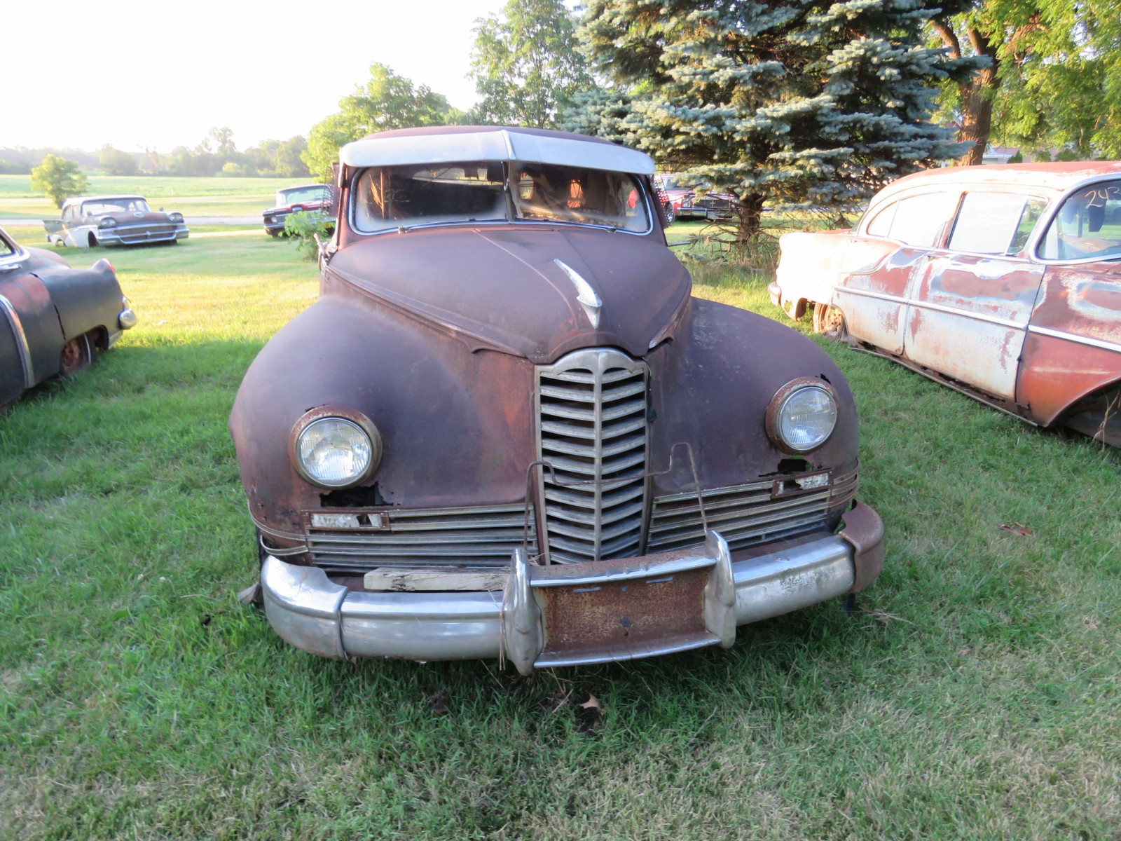 1948 Packard Sedan for parts - Image 2